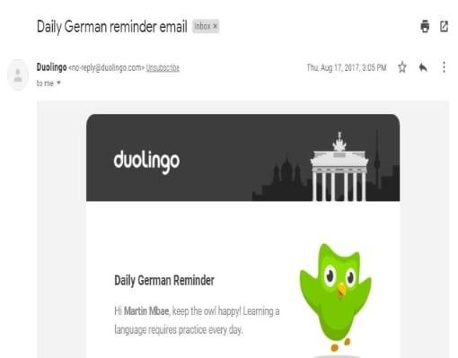 Martin-Duolingo